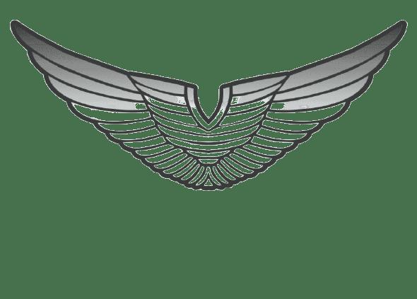 Eagle VIN check