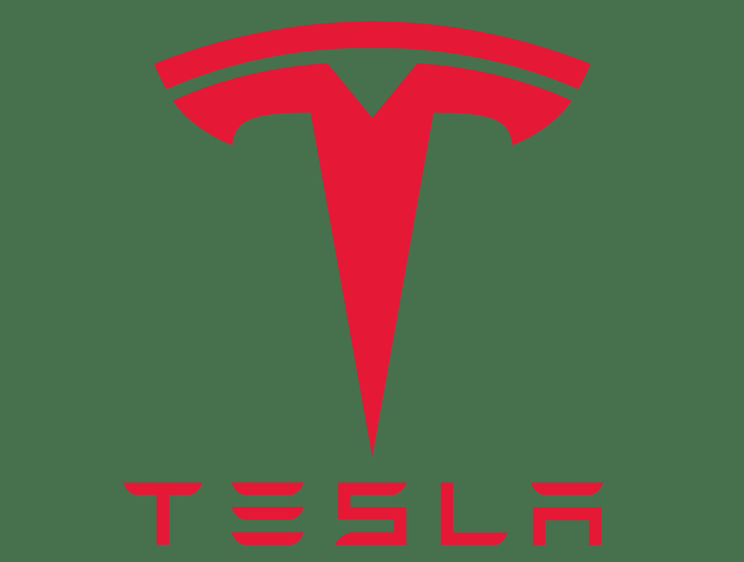 Tesla vin check