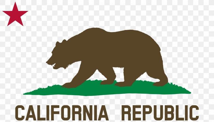 California License plate lookup
